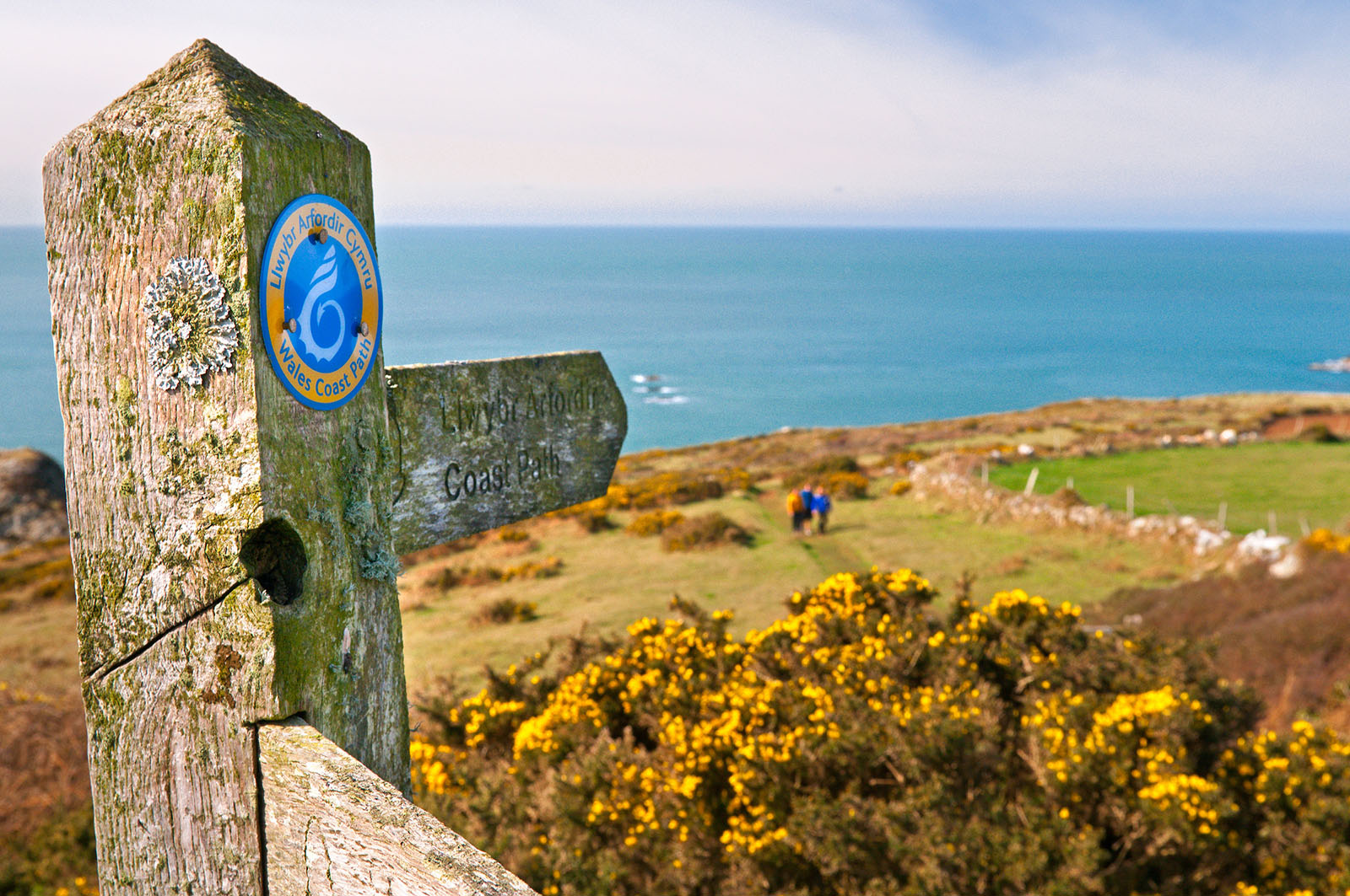 West Coast Path, Pembrokehsire