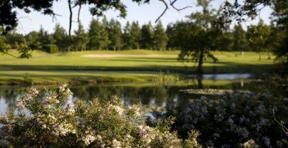 Golfreis: The Vale Resort